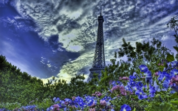 Man Made - Eiffel Tower Wallpapers and Backgrounds ID : 100427