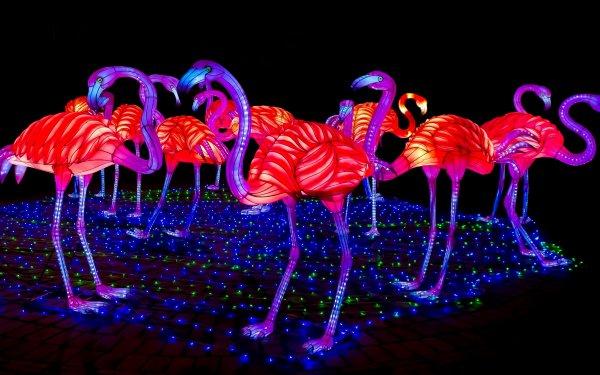 Man Made Sculpture Flamingo Pink Light HD Wallpaper | Background Image