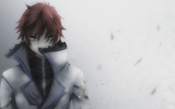 Anime Re:ZERO -Starting Life in Another World- Reinhard van Astrea HD Wallpaper   Background Image
