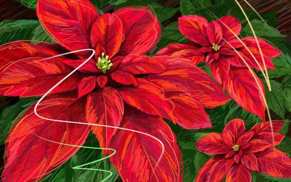 Artistic Flower Flowers Poinsettia HD Wallpaper   Background Image