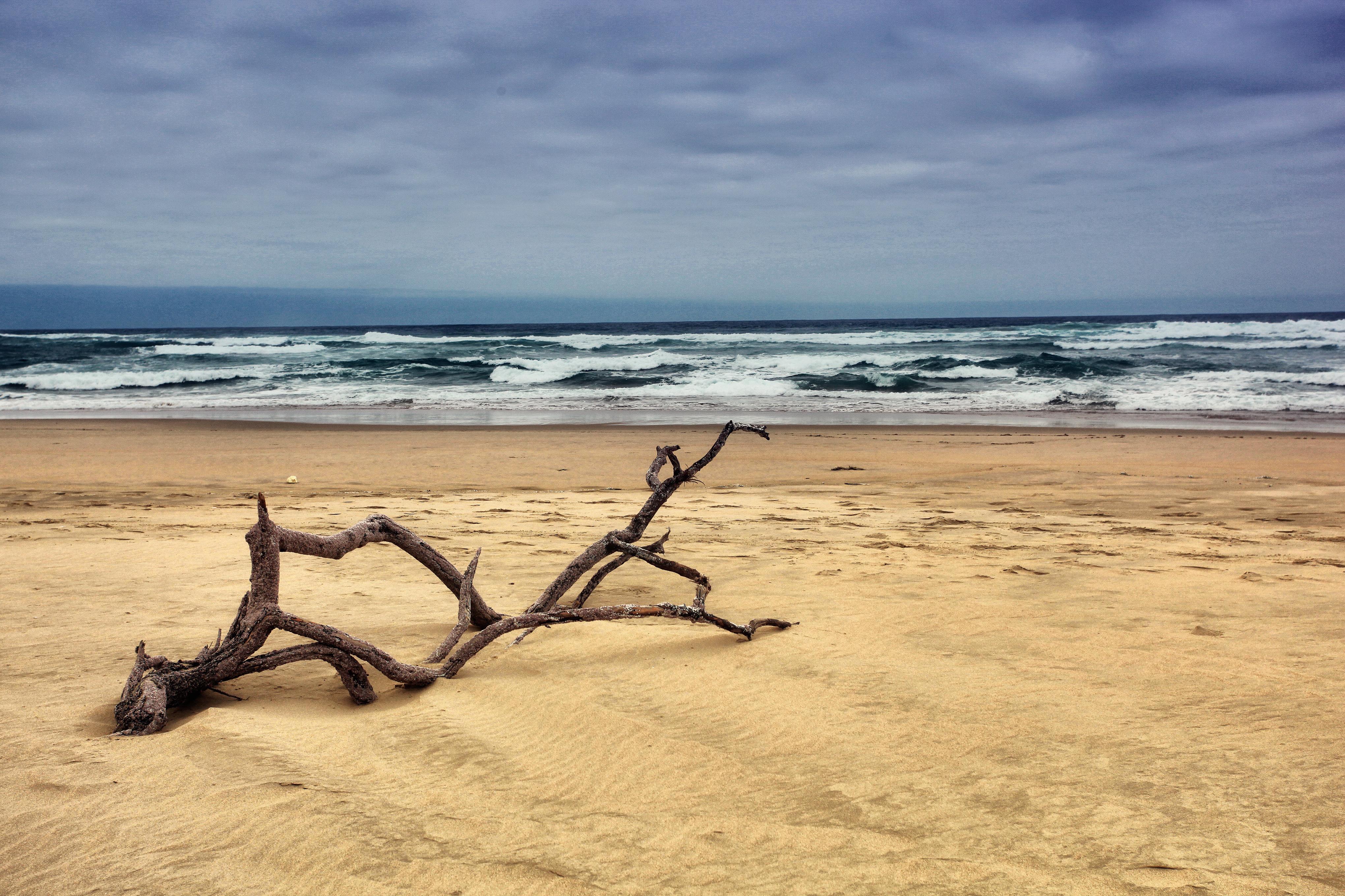 Beach 4k Ultra HD Wallpaper | Background Image | 4080x2720