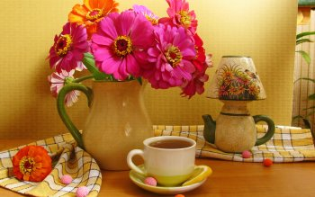 Photography - Still Life Wallpapers and Backgrounds ID : 102409