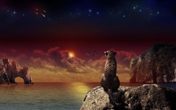 CGI - Animal Wallpapers and Backgrounds ID : 102705