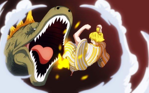 Anime One Piece Sanji X Drake HD Wallpaper   Background Image