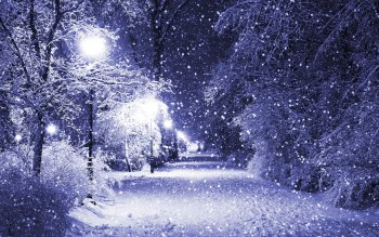 Фотографии - Winter Wallpapers and Backgrounds ID : 103159