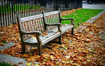 Man Made - Bench Wallpapers and Backgrounds ID : 103827