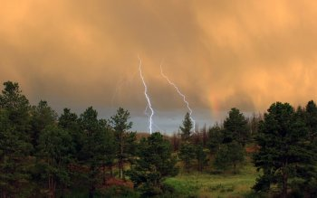 Photography - Lightning Wallpapers and Backgrounds ID : 104645