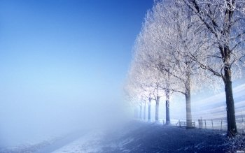 Erde - Winter Wallpapers and Backgrounds ID : 104919
