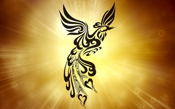 Artistic Other Phoenix HD Wallpaper   Background Image