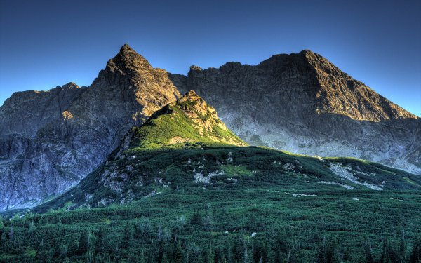 Earth Mountain Mountains Forest Tatra Poland HD Wallpaper | Background Image