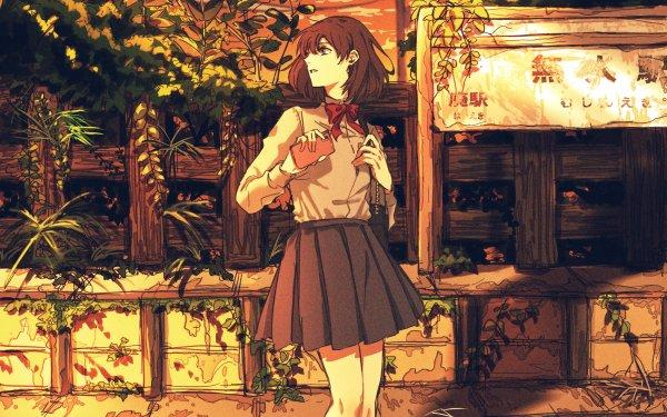 Anime Original Sunset Brown Hair HD Wallpaper   Background Image