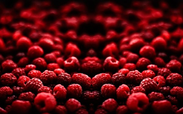 Food - berry Wallpapers and Backgrounds