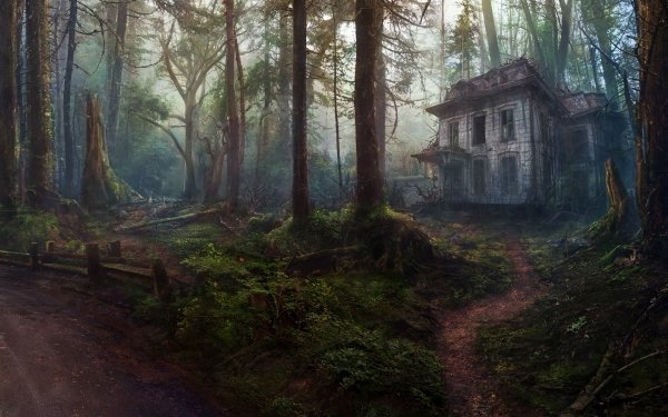 Fantasy House Old Abandoned Forest HD Wallpaper | Background Image
