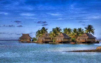 Fotografie - Tropical Wallpapers and Backgrounds ID : 106365