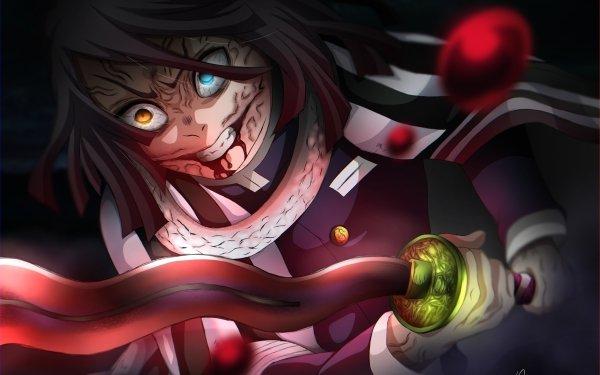 Anime Demon Slayer: Kimetsu no Yaiba Obanai Iguro Heterochromia HD Wallpaper | Background Image