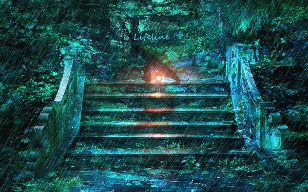 Anime Original Cat Rain HD Wallpaper | Background Image