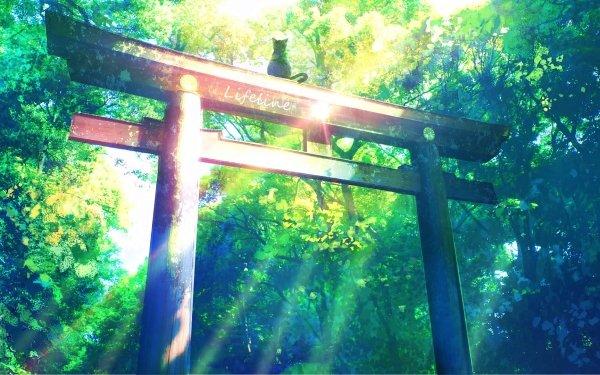 Anime Original Cat HD Wallpaper | Background Image
