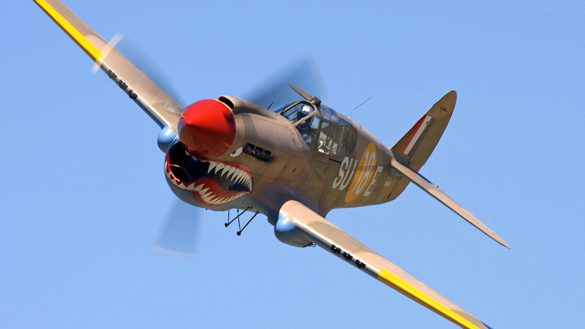 Militär - Curtiss P-40 Warhawk  - P-40 Hintergrundbild