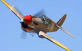 Military - Curtiss P-40 Warhawk Wallpapers and Backgrounds