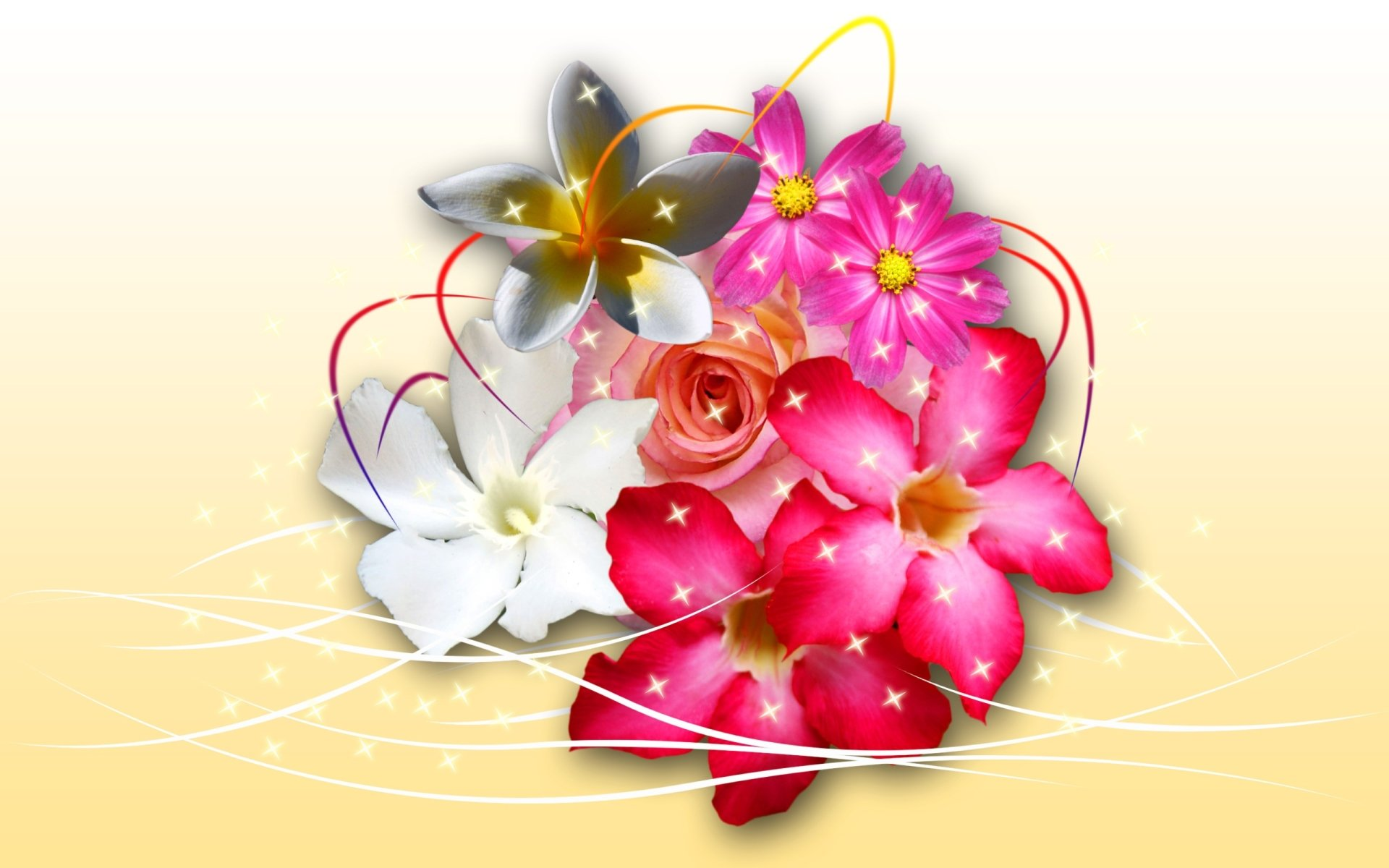 Wallpapers ID:110867