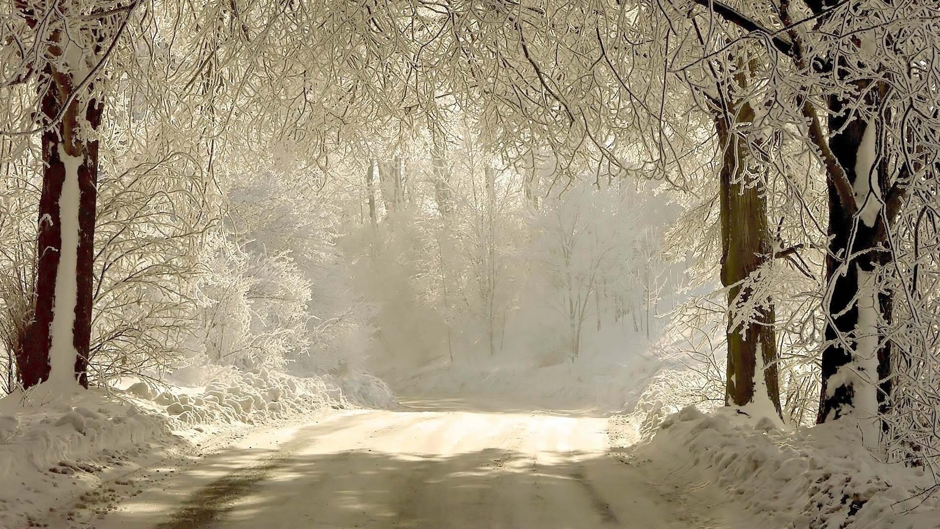 Photography - Winter  Christmas Road Snow White Wallpaper