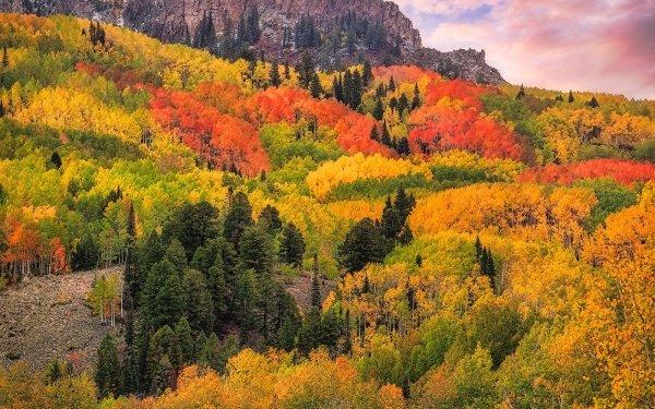 Earth Fall Forest Cloud Mountain Colorado San Juan Mountains HD Wallpaper | Background Image