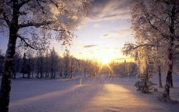 Earth - Winter Wallpapers and Backgrounds ID : 1125