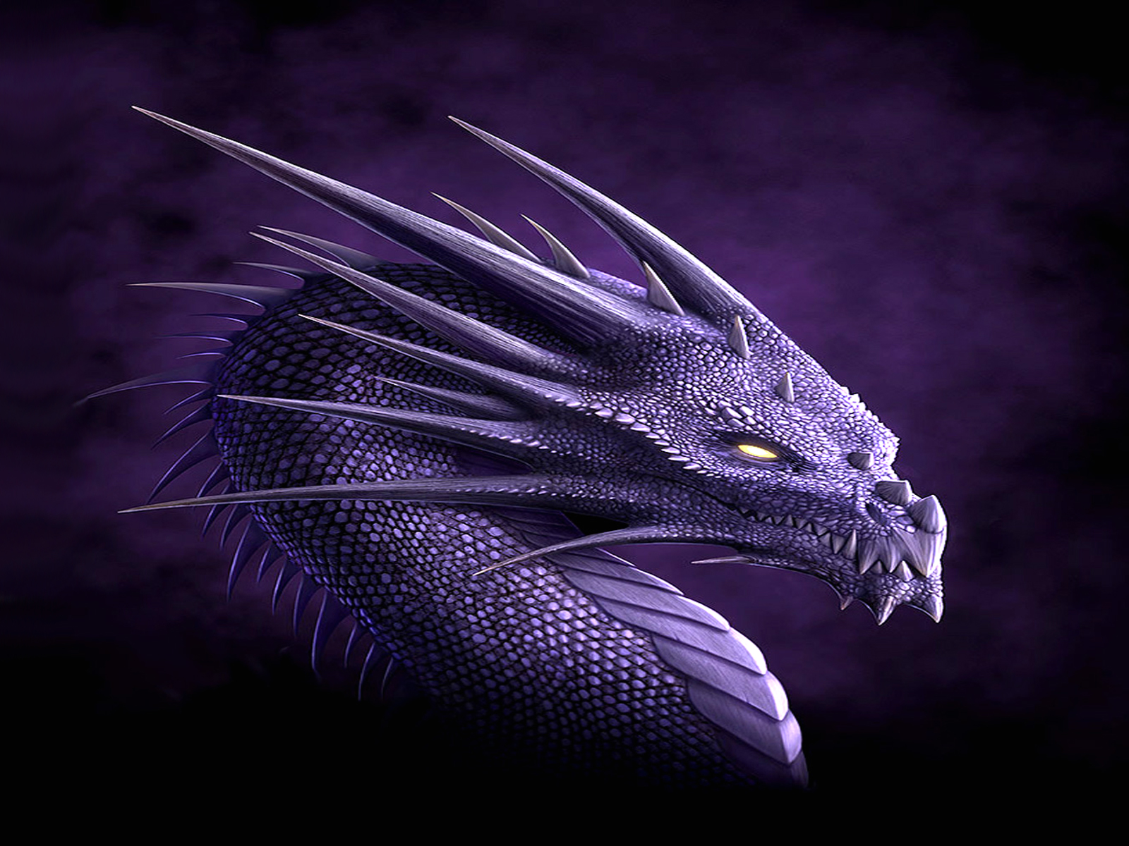 Fantasy - Dragon  - Purple Wallpaper