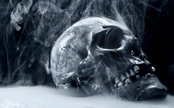 HD Wallpaper | Background Image ID:113315. 2560x1600 Dark Skull