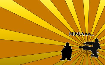 Humor - Ninja Wallpapers and Backgrounds ID : 113677