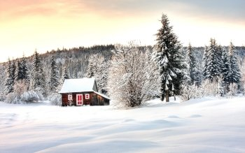 Earth - Winter Wallpapers and Backgrounds ID : 114767