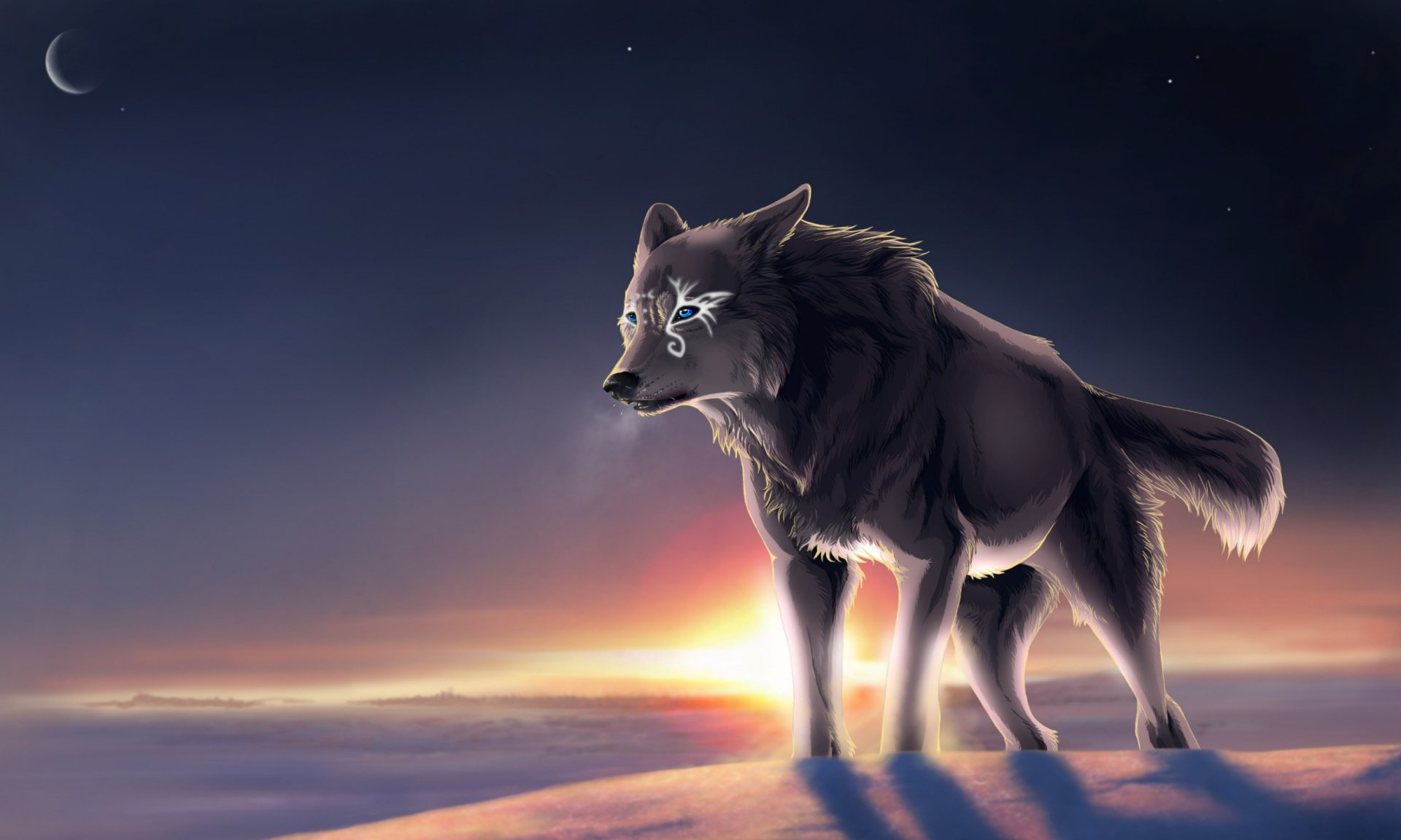Animal - Artistic  Wolf Dog Grey Animal Wallpaper