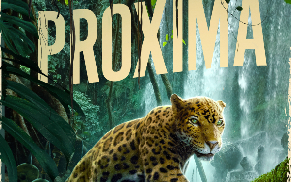 Movie Jungle Cruise HD Wallpaper   Background Image