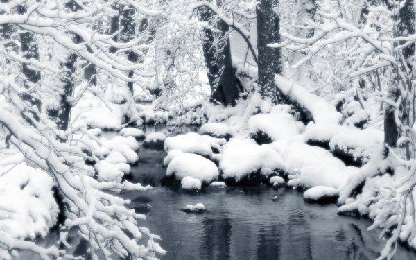 Tierra/Naturaleza Invierno Fondo de pantalla HD   Fondo de Escritorio