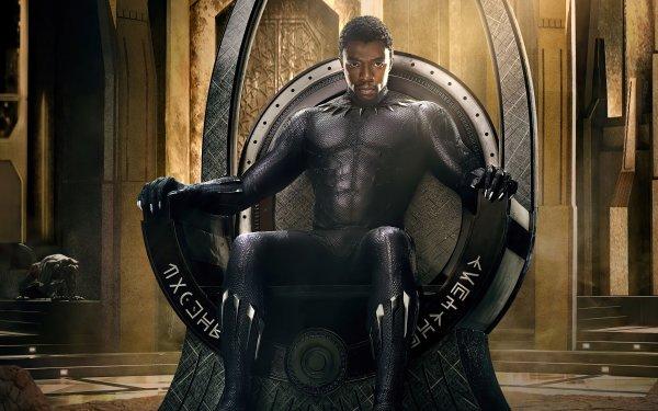 Movie Black Panther Chadwick Boseman HD Wallpaper | Background Image