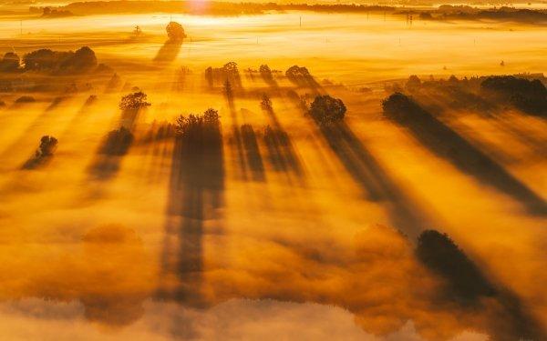 Earth Fog Lithuania Kaunas Sunbeam HD Wallpaper | Background Image
