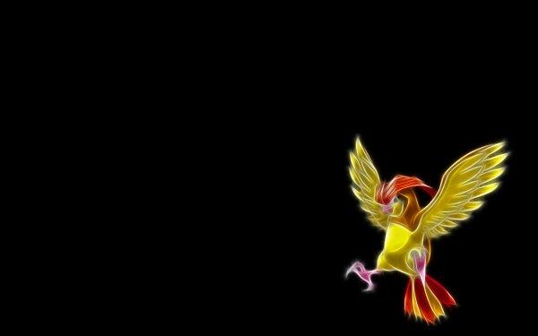 Anime Pokémon Pidgeotto Flying Pokémon HD Wallpaper | Background Image