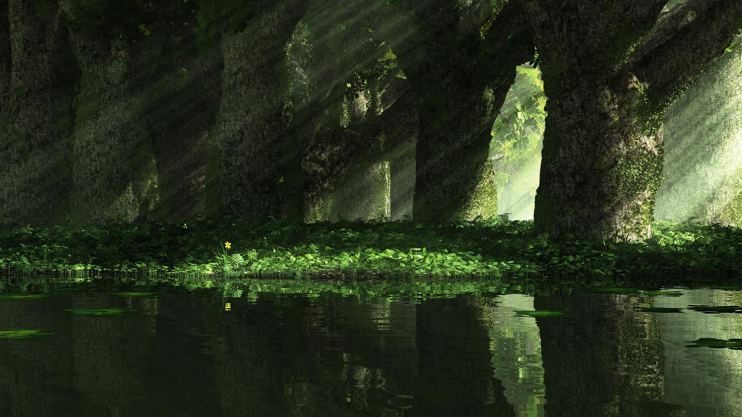 Terre/Nature - Scénique  Fond d'écran
