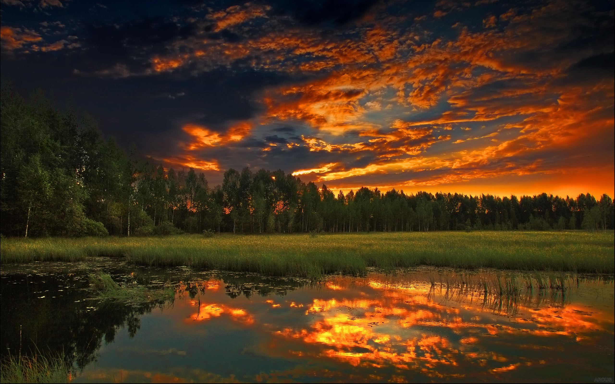 Earth - Sunset  Tree Lake Sky Wallpaper