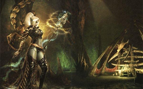 Video Game Lineage Dark Elf HD Wallpaper   Background Image