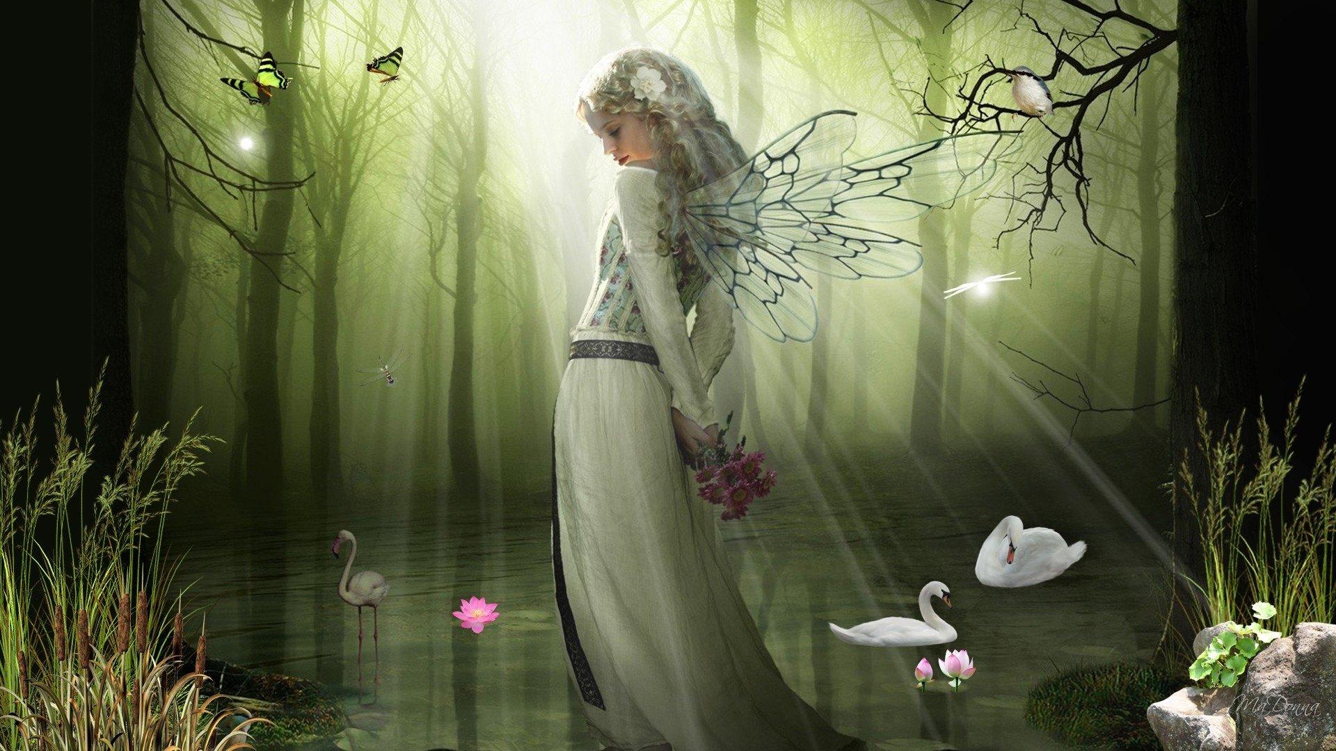 Fantasy - Fairy  Dragon Wallpaper