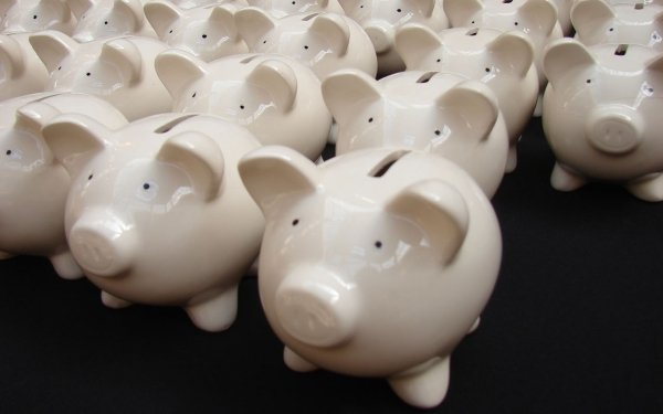 Man Made Piggy bank Pig HD Wallpaper | Background Image