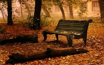 Man Made - Bench Wallpapers and Backgrounds ID : 144575