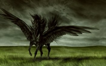 Fantasy - Pegasus Wallpapers and Backgrounds ID : 145309