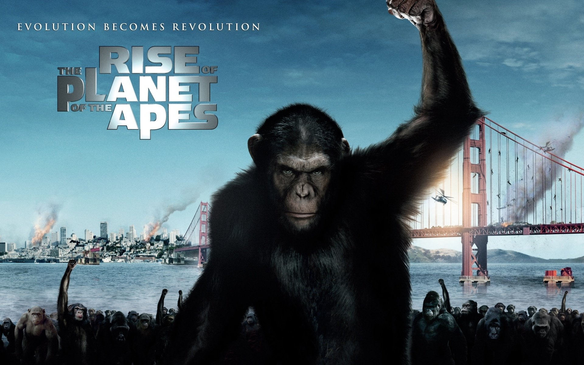 24 Rise Of The Planet Of The Apes Hd Wallpapers Background