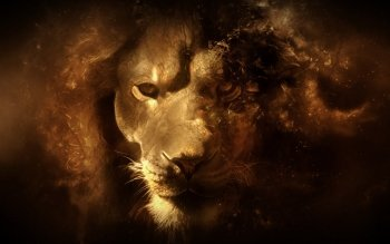 Fantasy - Animal Wallpapers and Backgrounds ID : 151419
