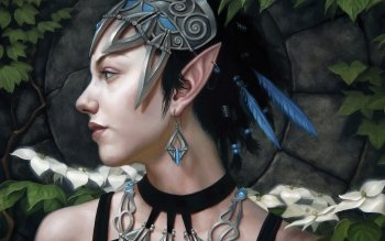 Fantasy - Elf Wallpapers and Backgrounds ID : 153275