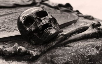 Dark - Skull Wallpapers and Backgrounds ID : 157185