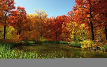 Erde - Herbst Wallpapers and Backgrounds ID : 159089