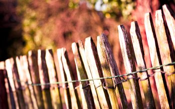 Man Made - Fence Wallpapers and Backgrounds ID : 160609